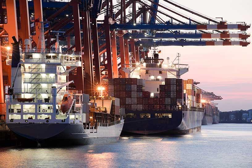 consulenza export online